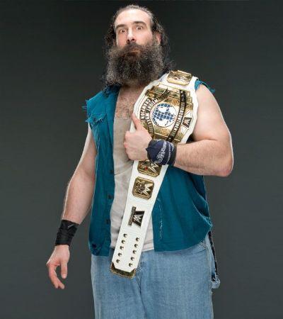 Luke Harper Championship