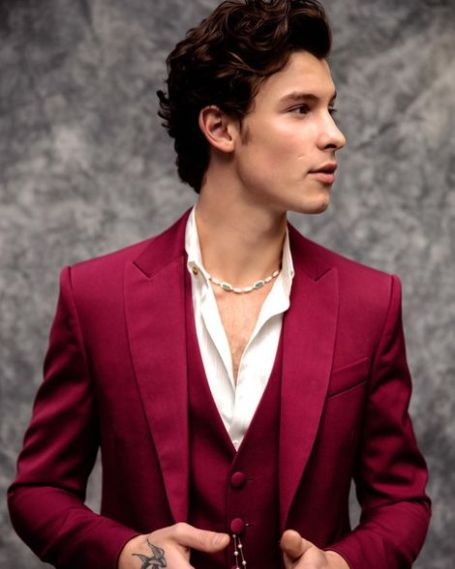 Shawn Mendes Net Worth, age